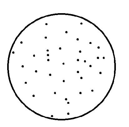 a big circle containing lots of dots