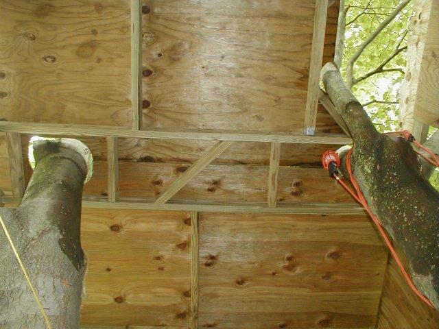 Treehouse Phase 4